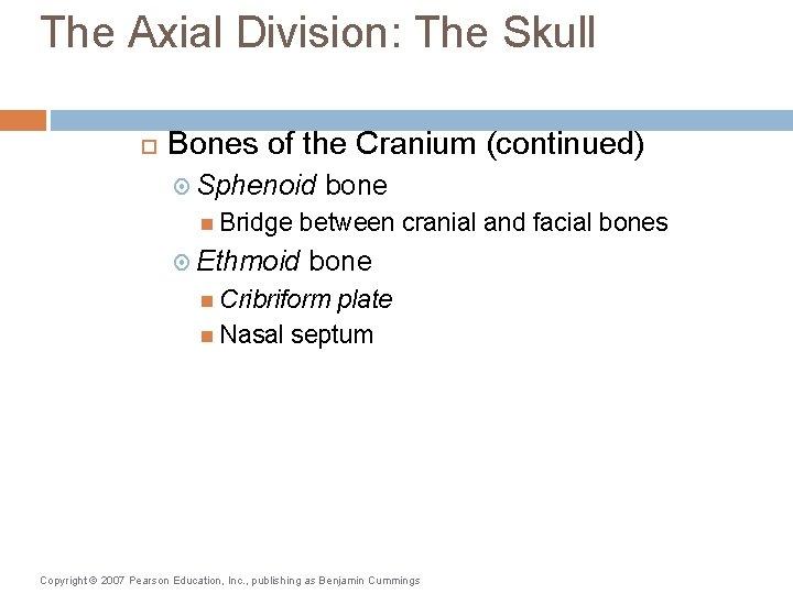The Axial Division: The Skull Bones of the Cranium (continued) Sphenoid Bridge bone between