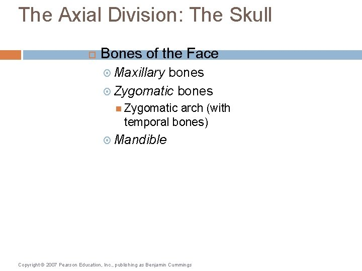 The Axial Division: The Skull Bones of the Face Maxillary bones Zygomatic arch (with