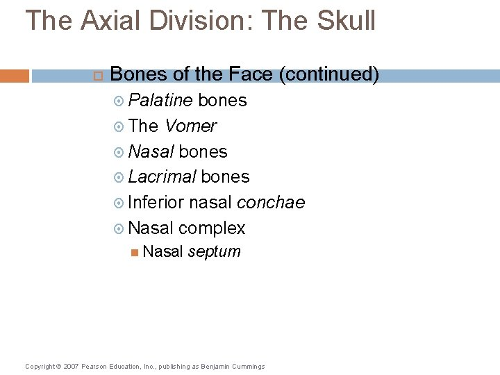 The Axial Division: The Skull Bones of the Face (continued) Palatine bones The Vomer