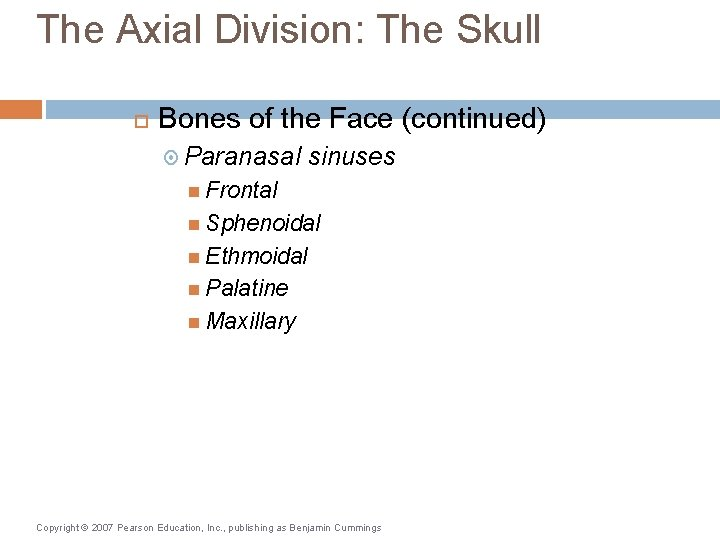 The Axial Division: The Skull Bones of the Face (continued) Paranasal sinuses Frontal Sphenoidal