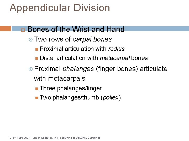 Appendicular Division Bones of the Wrist and Hand Two rows of carpal bones Proximal