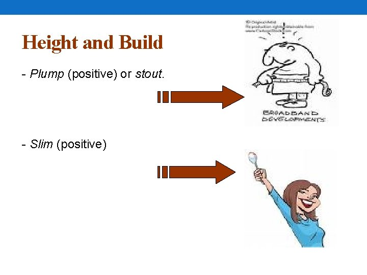 Height and Build - Plump (positive) or stout. - Slim (positive)