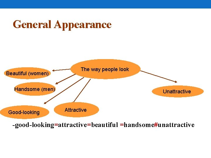 General Appearance Beautiful (women) The way people look Handsome (men) Good-looking Unattractive Attractive -good-looking=attractive=beautiful