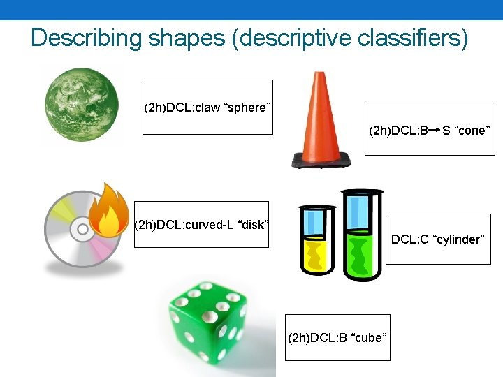 "Describing shapes (descriptive classifiers) (2 h)DCL: claw ""sphere"" (2 h)DCL: B S ""cone"" (2"