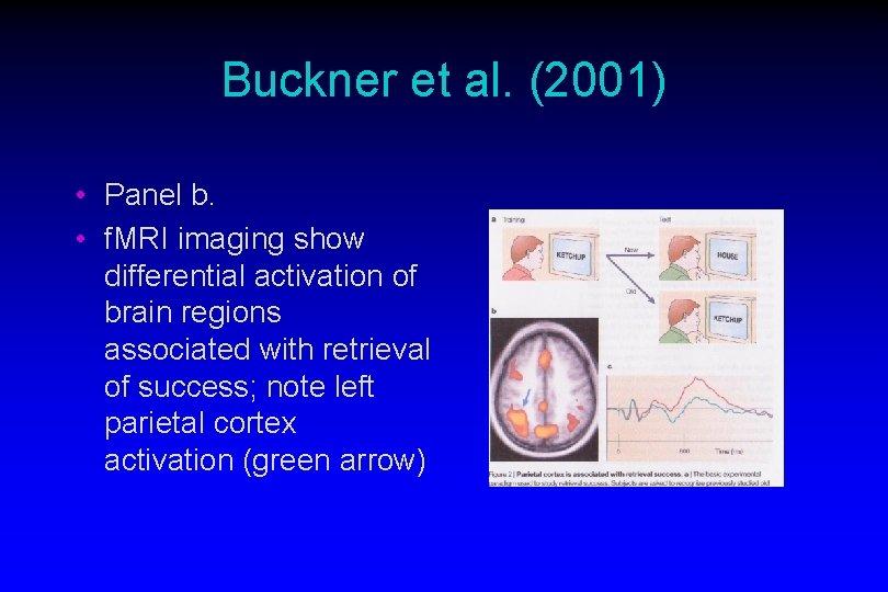 Buckner et al. (2001) • Panel b. • f. MRI imaging show differential activation