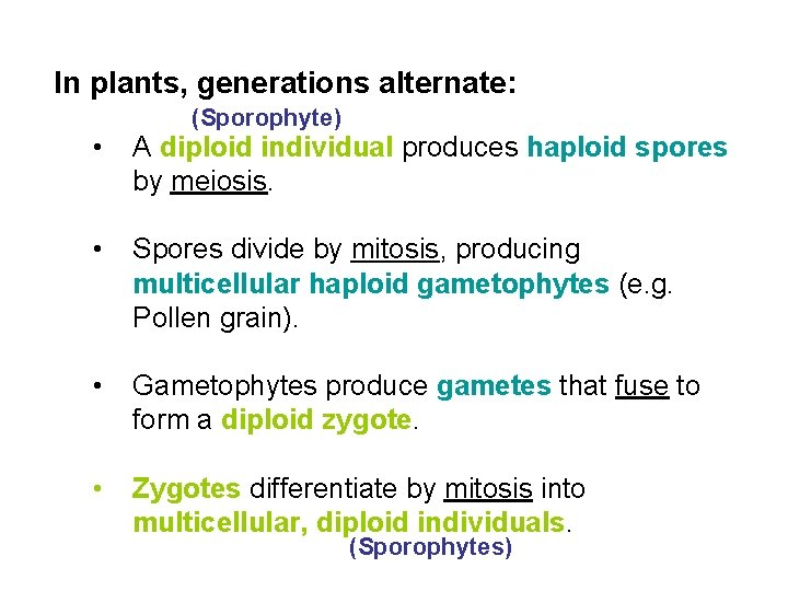 In plants, generations alternate: (Sporophyte) • A diploid individual produces haploid spores by meiosis.