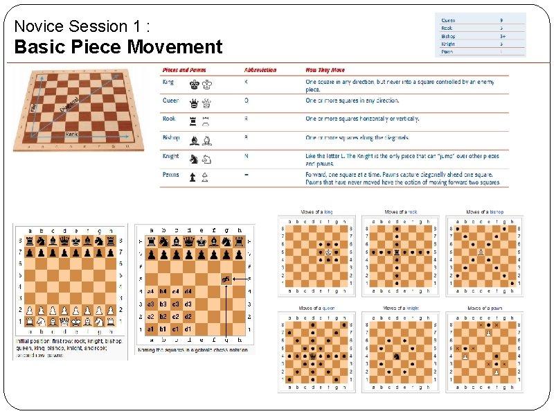 Novice Session 1 : Basic Piece Movement