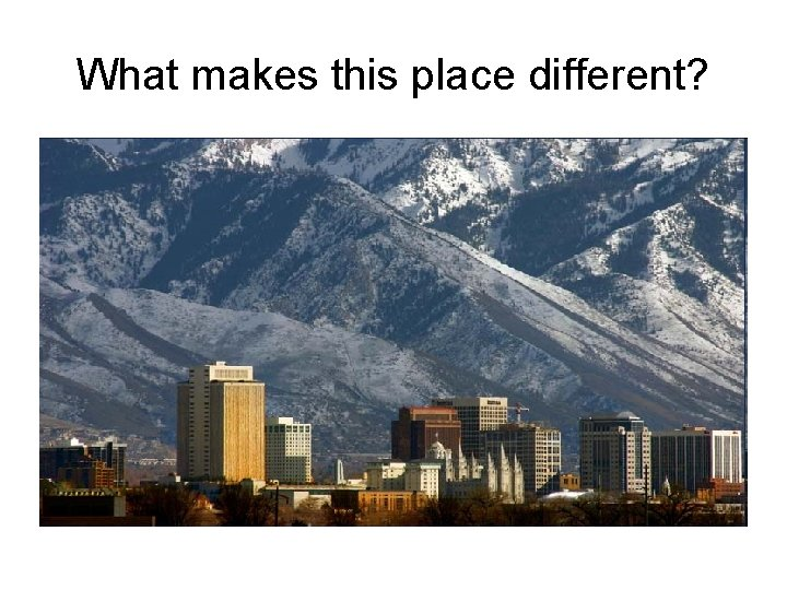 What makes this place different?