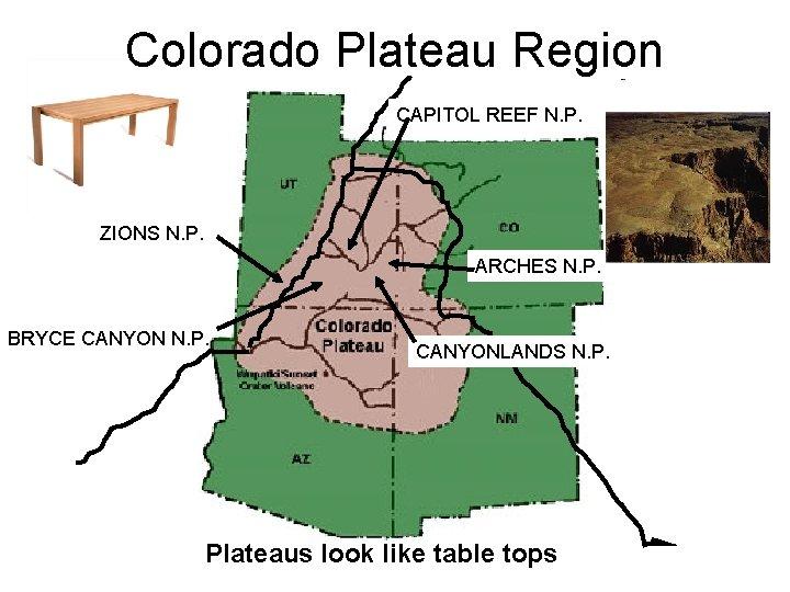 Colorado Plateau Region CAPITOL REEF N. P. ZIONS N. P. ARCHES N. P. BRYCE