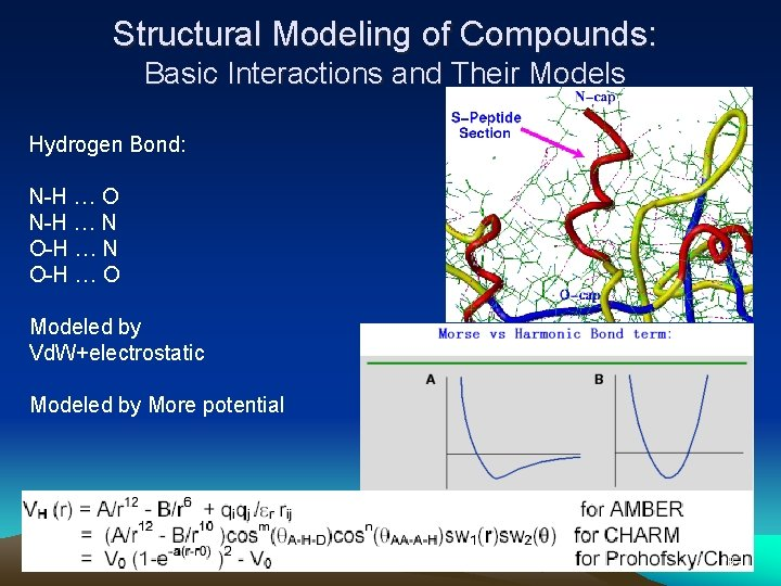 Structural Modeling of Compounds: Basic Interactions and Their Models Hydrogen Bond: N-H … O