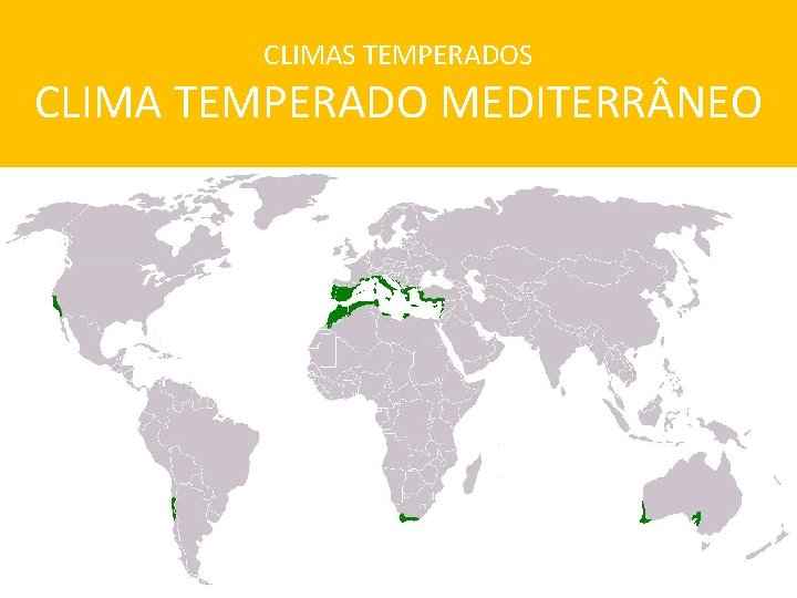 CLIMAS TEMPERADOS CLIMA TEMPERADO MEDITERR NEO