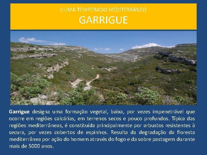 CLIMA TEMPERADO MEDITERR NEO GARRIGUE Garrigue designa uma formação vegetal, baixa, por vezes impenetrável