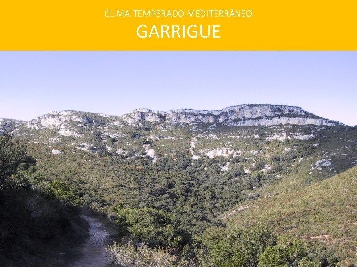 CLIMA TEMPERADO MEDITERR NEO GARRIGUE