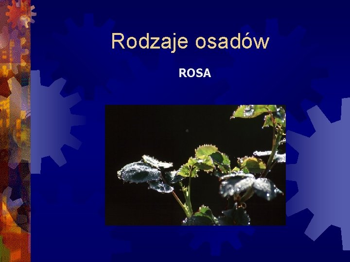 Rodzaje osadów ROSA