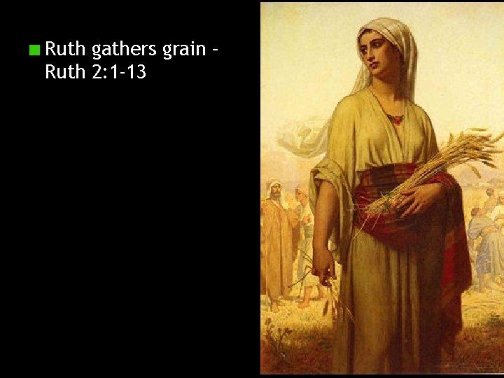Ruth gathers grain – Ruth 2: 1 -13