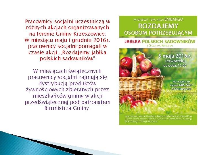 Pracownicy socjalni uczestniczą w różnych akcjach organizowanych na terenie Gminy Krzeszowice. W miesiącu maju