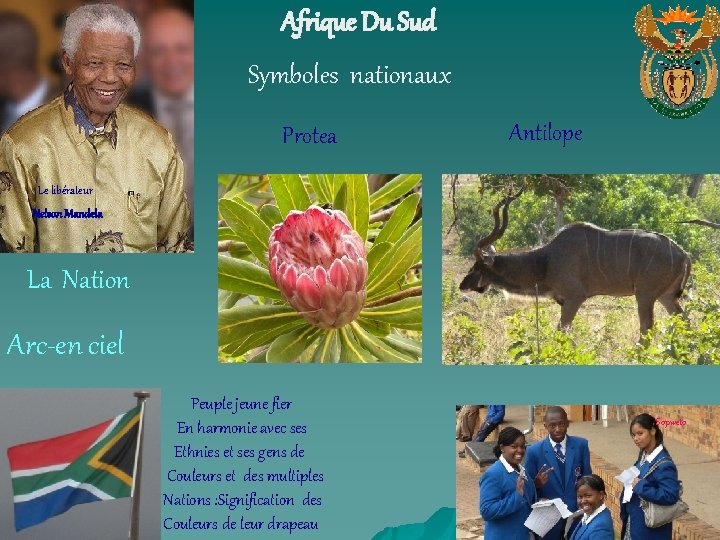 Afrique Du Sud Symboles nationaux Protea Antilope Le libérateur Nelson Mandela La Nation Arc-en
