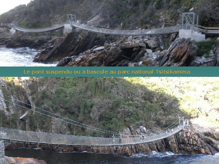 Le pont suspendu ou à bascule au parc national Tsitsikamma