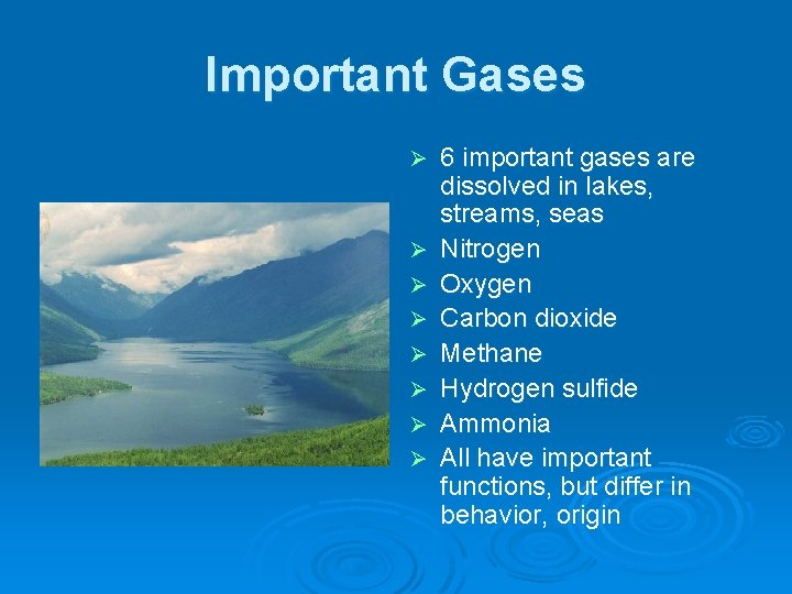 Important Gases Ø Ø Ø Ø 6 important gases are dissolved in lakes, streams,