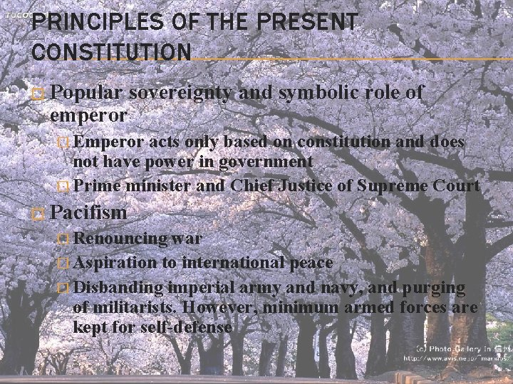 PRINCIPLES OF THE PRESENT CONSTITUTION � Popular sovereignty and symbolic role of emperor �