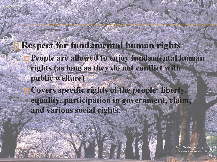 � Respect for fundamental human rights � People are allowed to enjoy fundamental human