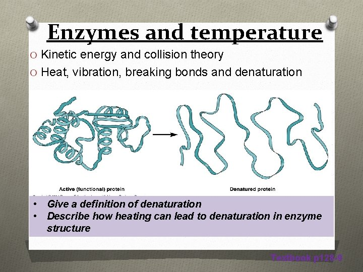 Enzymes and temperature O Kinetic energy and collision theory O Heat, vibration, breaking bonds