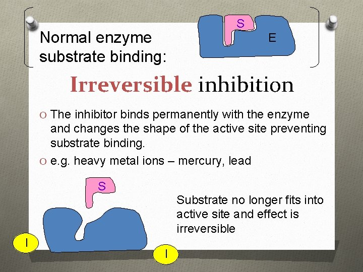 Normal enzyme substrate binding: S E Irreversible inhibition O The inhibitor binds permanently with