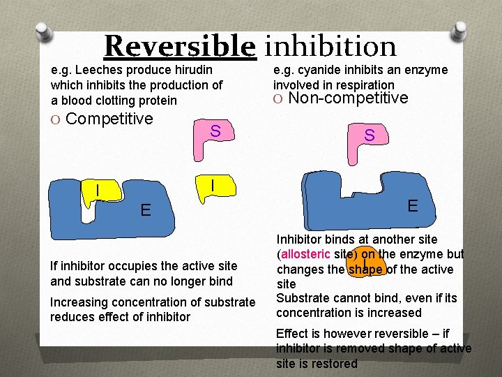 Reversible inhibition e. g. Leeches produce hirudin which inhibits the production of a blood