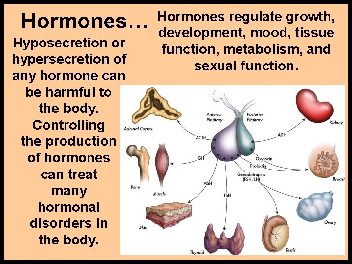 Hormones… Hyposecretion or hypersecretion of any hormone can be harmful to the body. Controlling