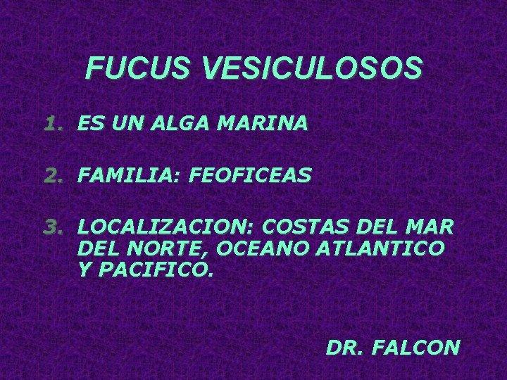 FUCUS VESICULOSOS 1. ES UN ALGA MARINA 2. FAMILIA: FEOFICEAS 3. LOCALIZACION: COSTAS DEL