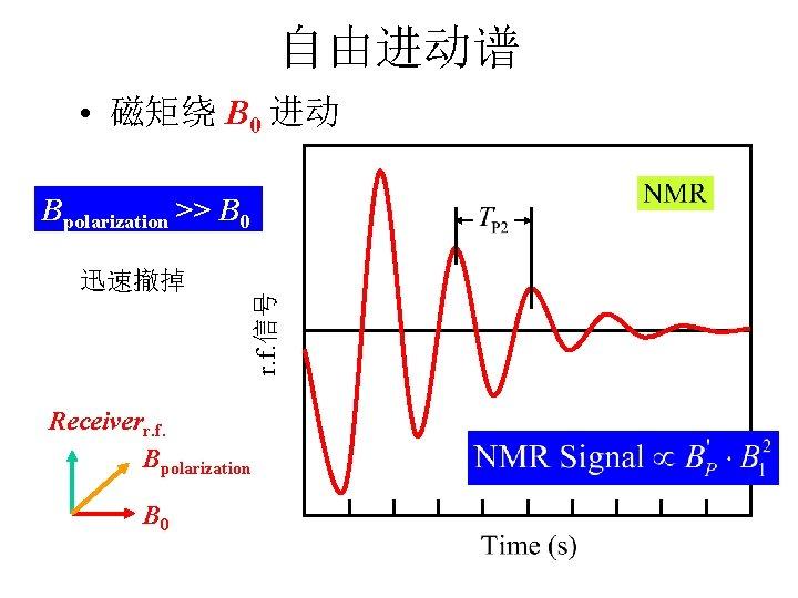 自由进动谱 • 磁矩绕 B 0 进动 迅速撤掉 r. f. 信号 Bpolarization >> B 0
