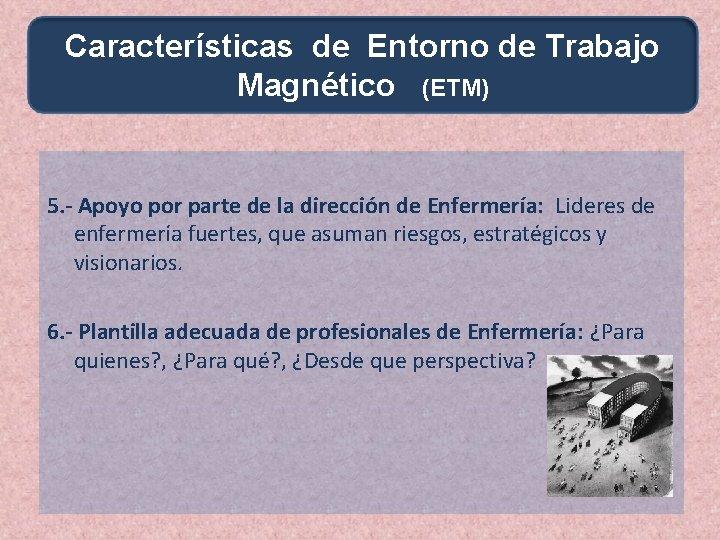 Características de Entorno de Trabajo Magnético (ETM) 5. - Apoyo por parte de la