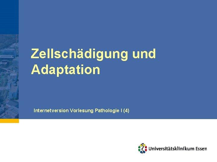Zellschädigung und Adaptation Internetversion Vorlesung Pathologie I (4)