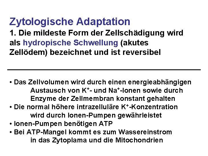 Zytologische Adaptation 1. Die mildeste Form der Zellschädigung wird als hydropische Schwellung (akutes Zellödem)