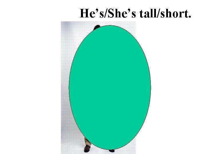 He's/She's tall/short.