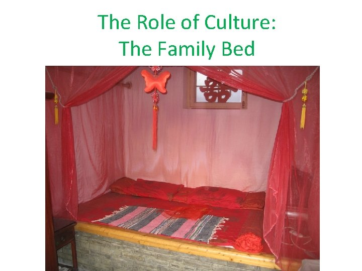 The Role of Culture: The Family Bed