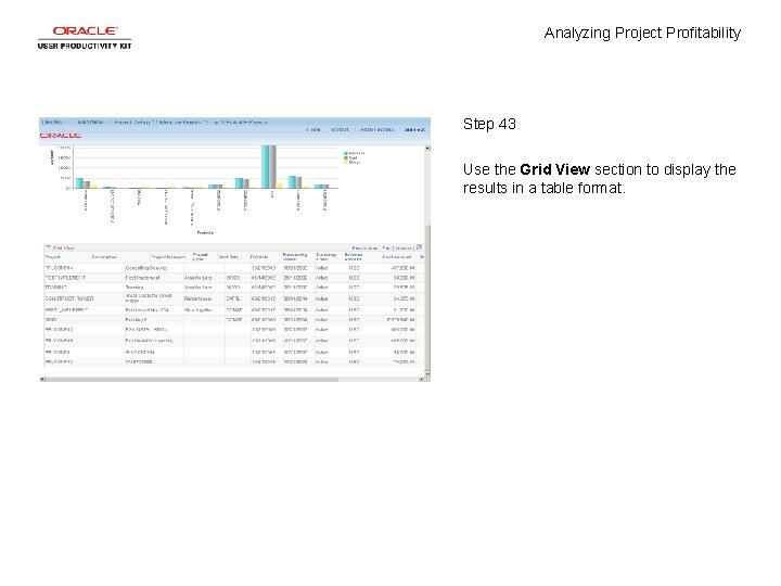 Analyzing Project Profitability Step 43 Use the Grid View section to display the results