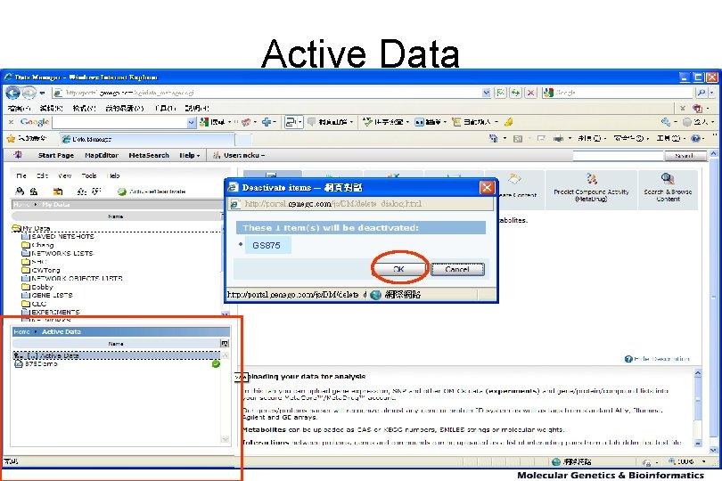 Active Data GS 875