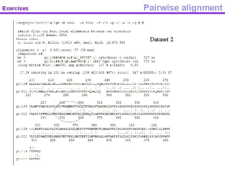 Exercises Pairwise alignment Dataset 2