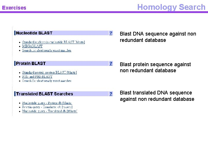 Exercises Homology Search Blast DNA sequence against non redundant database Blast protein sequence against