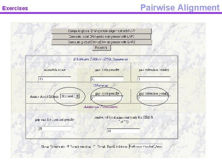 Exercises Pairwise Alignment