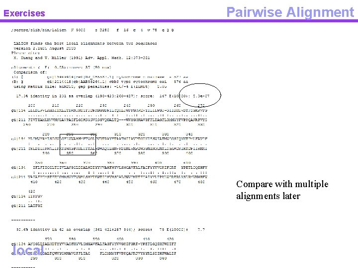 Exercises Pairwise Alignment Compare with multiple alignments later local