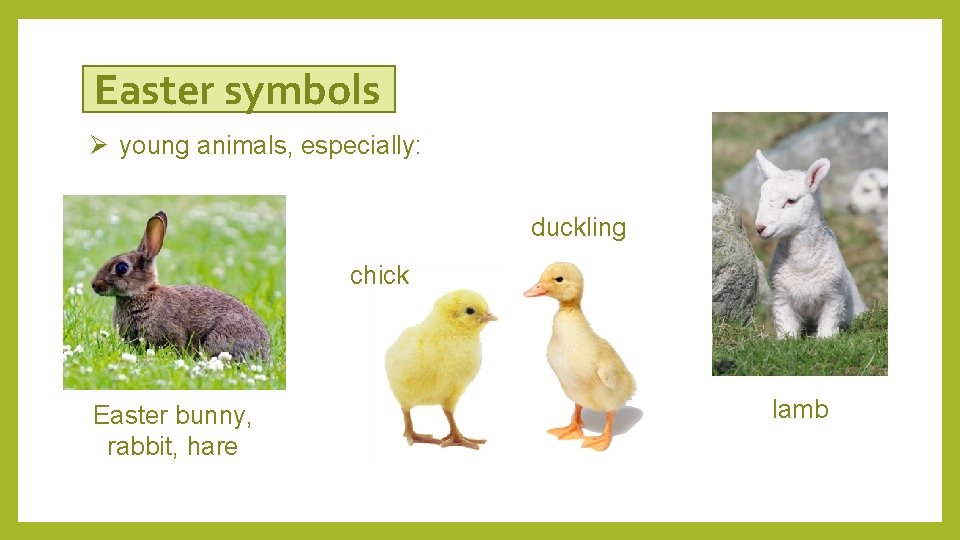 Easter symbols Ø young animals, especially: duckling chick Easter bunny, rabbit, hare lamb