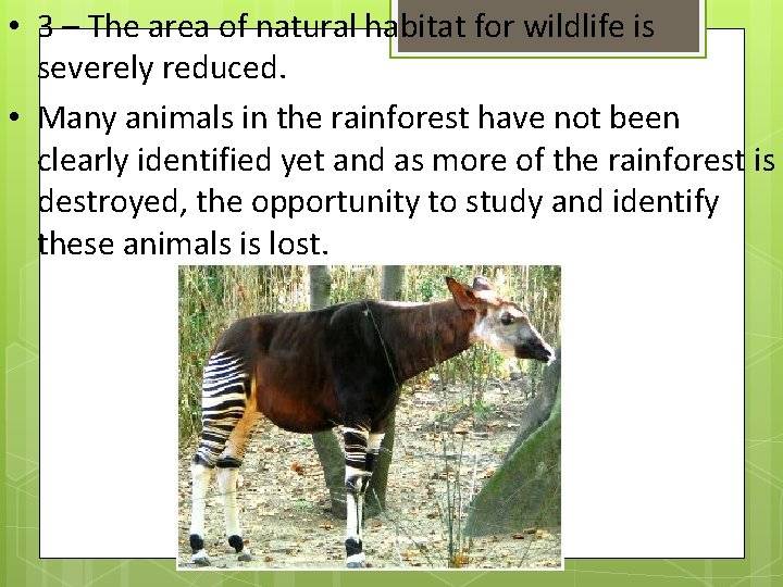 • 3 – The area of natural habitat for wildlife is severely reduced.