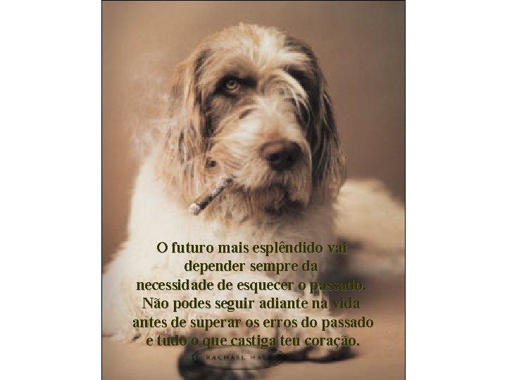 O futuro mais esplêndido vai depender sempre da necessidade de esquecer o passado. Não