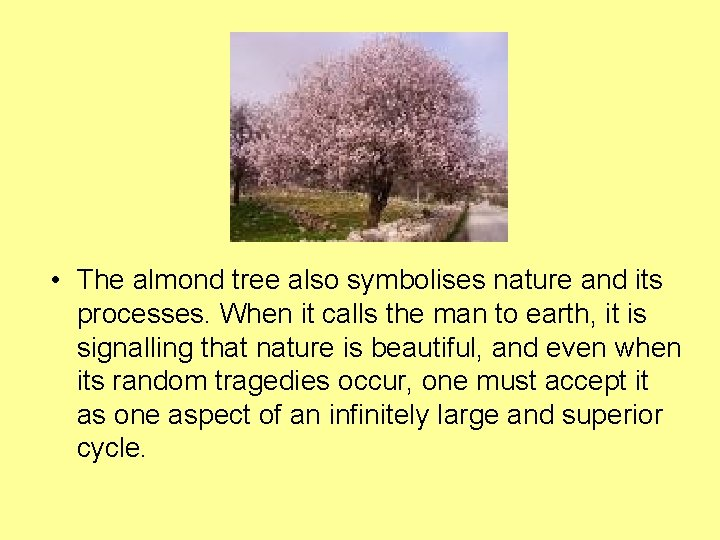 • The almond tree also symbolises nature and its processes. When it calls