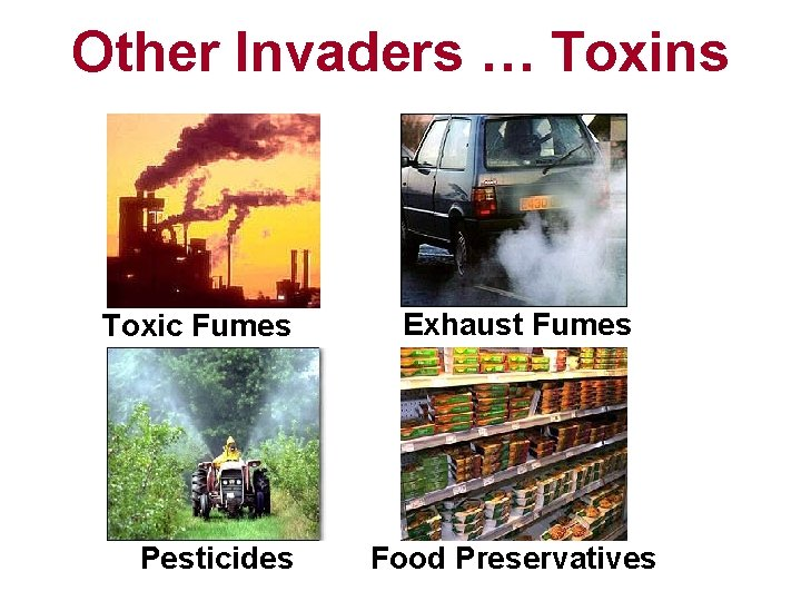 Other Invaders … Toxins Toxic Fumes Pesticides Exhaust Fumes Food Preservatives