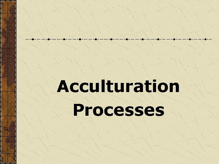 Acculturation Processes