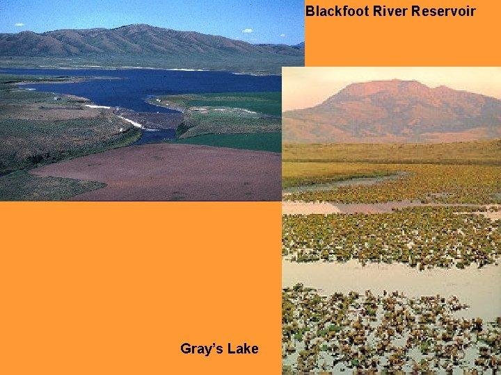 Blackfoot River Reservoir Gray's Lake