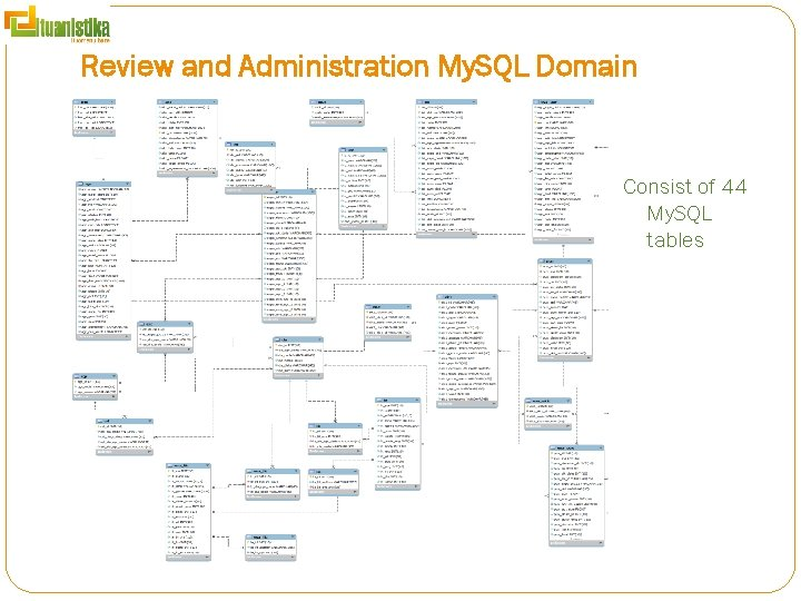 Review and Administration My. SQL Domain Consist of 44 My. SQL tables